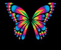 HoC Butterfly logo